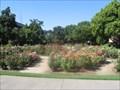 Image for George Petersen Rose Garden - Chico, CA