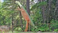 Image for Metallosaurus - Slocan, British Columbia