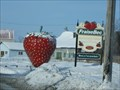 Image for THE BIGGEST STRAWBERRY - Quebec, Canada