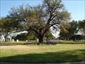 Image for Turner Oak - Fort Worth Texas