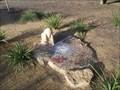 Image for Rockpool Mosaic - Angelsea - Victoria - Australia