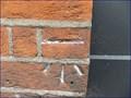 Image for Cut Bench Mark - Eccleston Place, London, UK