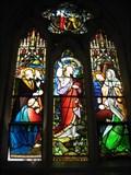 Image for St Stephens  Cathedral - Brisbane - Australia