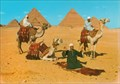 Image for Camelriders in front of the Pyramids 2 - Giza