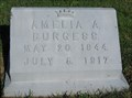 Image for Burgess - Troy Cemetery - Troy Township, Ohio