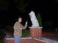 Image for Lion Tamer