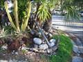 Image for Anchor-Scotland Street-Dunedin, FL