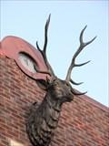 Image for Elks Lodge No 1283 McMinnville Oregon