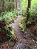 Image for Juan de Fuca Marine Trail, Southeast Trailhead - Vancouver Island, British Columbia, Canada