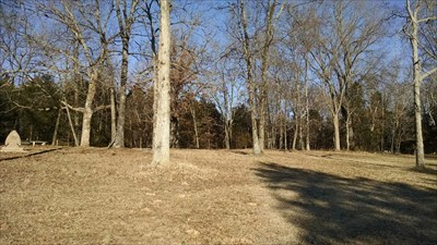 Mountain Cemetery, by MountainWoods. This photo shows both portions of the cemetery. The third grave in the left (open) portion is just a thin line immediately left of the tree in the foreground.  The majority of graves (at this time) are off to the right in the trees.