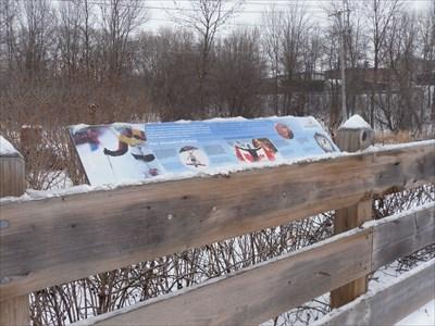 Panneau info fixer près de la passerelle du sentier.   panel set near the footbridge the trail.