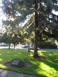 Image for Ethel Lewis - Triton Museum - Santa Clara, CA