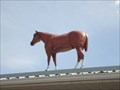 Image for M&R Feeds & Farm Supply Horse