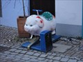 Image for Riding the Pig - Rottenburg, Germany, BW