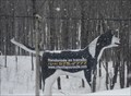 Image for Le chien du chenil la Poursuite - Québec, Canada