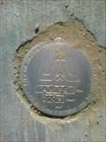 Image for City Of Arlington GPS Network - AR96