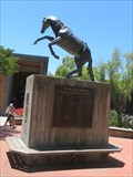 Image for Cal Poly Mustang - SanLuis Obispo, CA