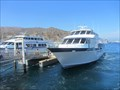 Image for Catalina Express - Avalon, CA