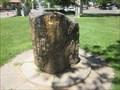 Image for Hale Park Petrified Tree  - Lodi, CA