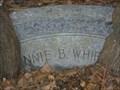 Image for Headstone Eating Oak Trees - Jacksonville, FL