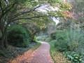 Image for Cambridge University Botanic Garden  - Brookside, Cambridge, UK