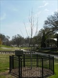 Image for North Carolina Liberty Tree - Freedom Park - Charlotte, NC