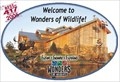 Image for Wonders of Wildlife