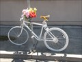 Image for Mathew Sperry Ghost Bike - Oakland, California