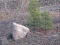 Image for Glacial Erratic, Mosier, Oregon