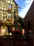 Image for La fontaine Constantin (Alsace)