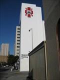 Image for Spider Pelt - San Francisco, CA