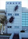Image for Yangyang Insectarium (양양 곤충생태관)   -  Yangyang, Korea