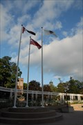 Image for Municipal Flag at Brampton City Hall