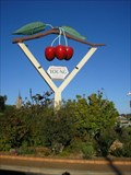 Image for Big Cherries in Young, NSW, Australia