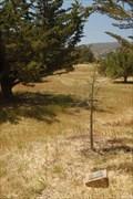 Image for Arnold A. Staub - San Luis Obispo California
