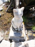 Image for Chippie the Town Cat — Palmerston, New Zealand