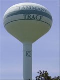 Image for The Tammany Trace Water Tower