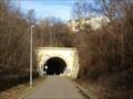 Image for Starý vítkovský tunel, Praha 3, Czech republic