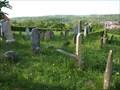 Image for židovský hrbitov / the former Jewish cemetery, Dolní Kounice, Czech republic