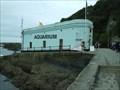 Image for Mevagissey Aquarium, Cornwall UK