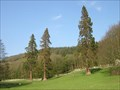 Image for Redwoods Holker Hall Cumbria