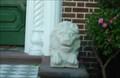 Image for Lion - Charleston