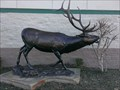 Image for I'm the Boss - Elk statue - Columbia SC