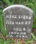 Image for Simpson Cemetery (African-American) Mount Dora, Florida