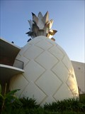 Image for Giant Pineapple - Downtown Disney - Buena Vista, Florida.