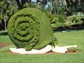 Image for Snail - Cypress Gardens, FL