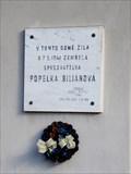Image for Popelka Bilianová - Vyšehrad, Praha, CZ