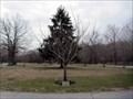 Image for David Lenn Wilkins - Lakeview Cemetery - Cinnaminson, NJ
