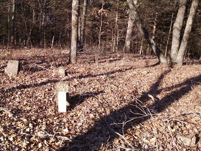 Mountain Cemetery, by MountainWoods. One headstone is propped up. There are other stones that appear to have no letters, but they may be foot stones.