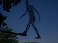 Image for Man in the Trees - Alfred, NY USA